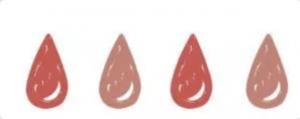 Loop culottes menstruelles